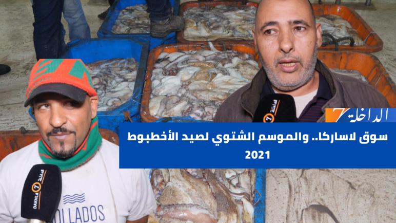سوق لاساركا.. والموسم الشتوي لصيد الأخطبوط 2021