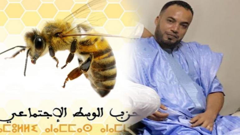 """الشاب """"حمدي مشنان"""" مرشح حزب """"النحلة"""" بالغرفة الفلاحية"""